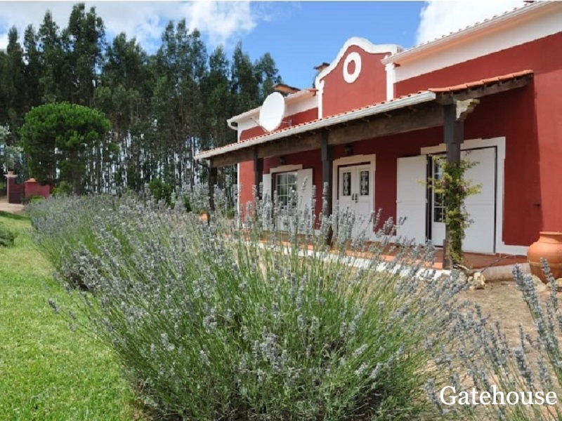 Silver Coast - Traditional 4 Bed Villa With Pool For Sale In Obidos